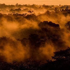 Amazon-Rainforest-Ecuador