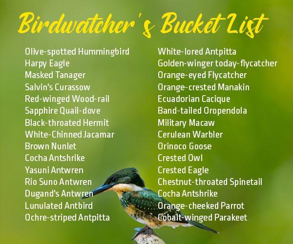 Birdwatchers-Bucket-List