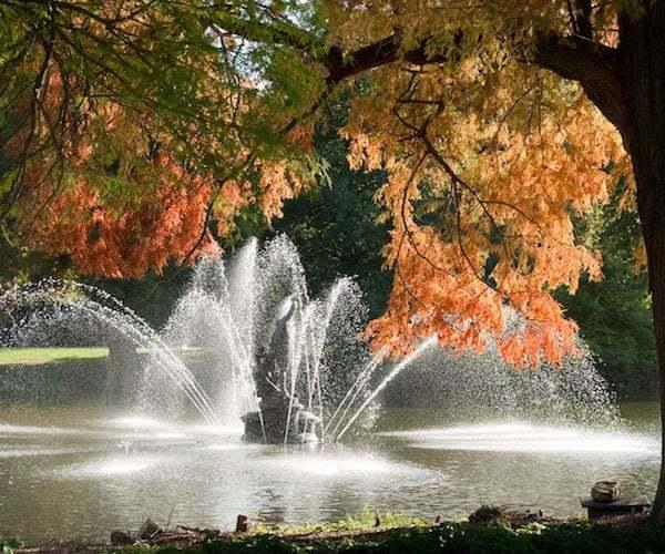 Autumn Colour at Kew Gardens © RBG Kew