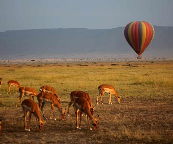 ballon safari in queen elizabeth national park