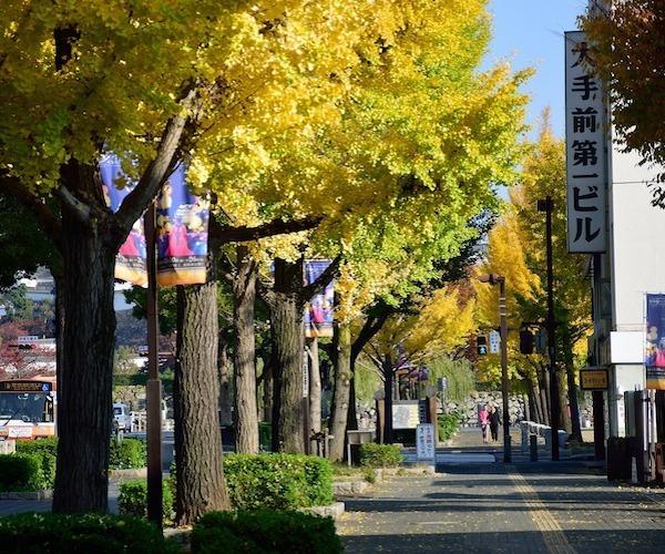 november japan
