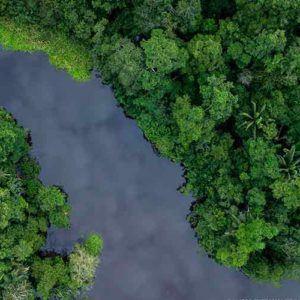 pristine-ecosystems
