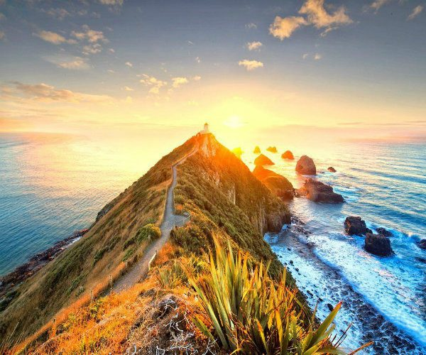 Nugget Point - The Catlins Otago