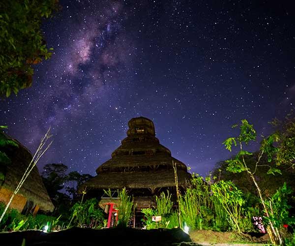 amazon-night sky