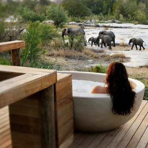 Top 5 ultra-luxurious safari lodges in South Africa
