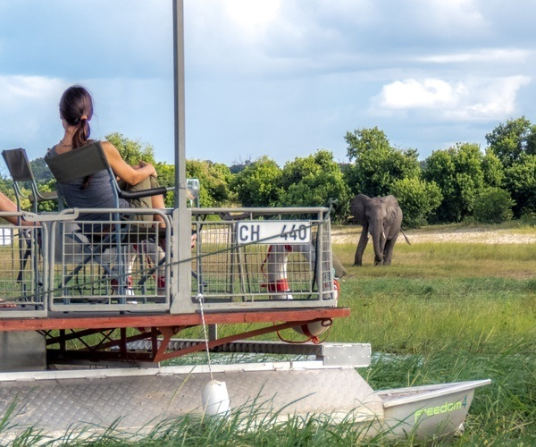 Chobe Elephant Game Viewing