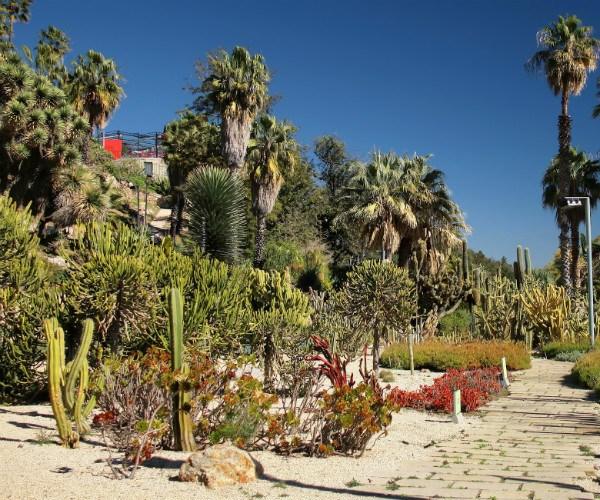 The Mossèn Costa I Llobera Gardens