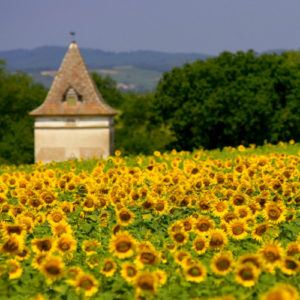 Short stay: Domaine de Perches, Gaillac, France