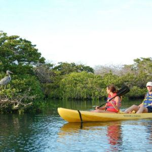 Top 5 things to do during your honeymoon in Galapagos