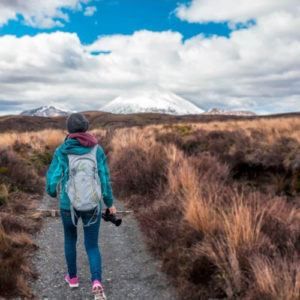 5 of our favourite short, easy walks in New Zealand