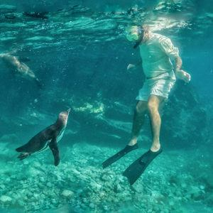 Top 10 experiences on a Galapagos cruise