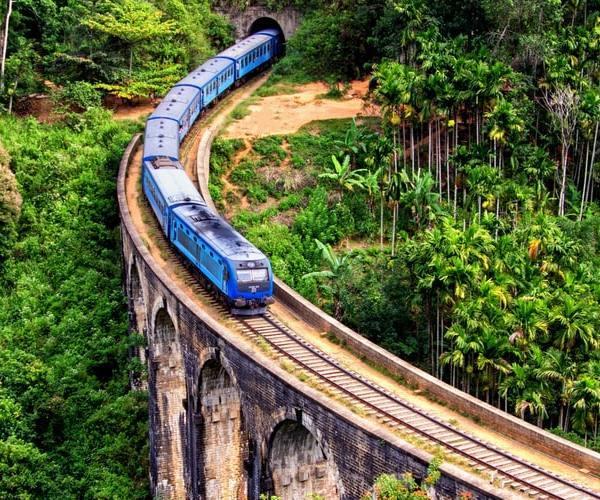 train journey through the tea country