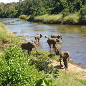 5 places to visit in central Malawi