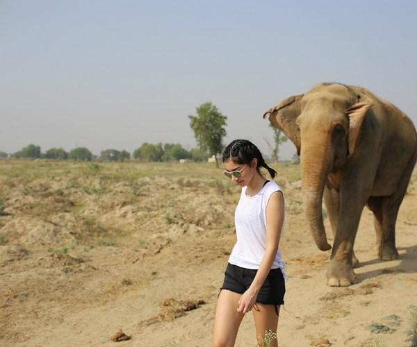 Luxury family volunteer vacation India
