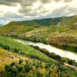 A tasteful education: 5 historic Portuguese wine estates
