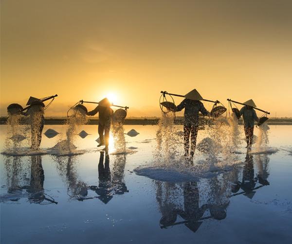 Photo of the week: Salt Harvesting, Vietnam