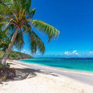 Magic in the Cayman Islands