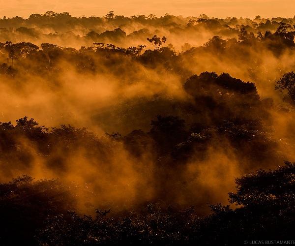 Añangu Land- Canopy mist