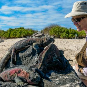 The ultimate list: 100 things to do in the Galapagos Islands
