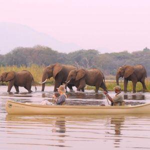 In praise of the mighty Zambezi!