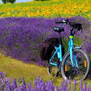 Cycling in Provence – the best way to see this beautiful region?