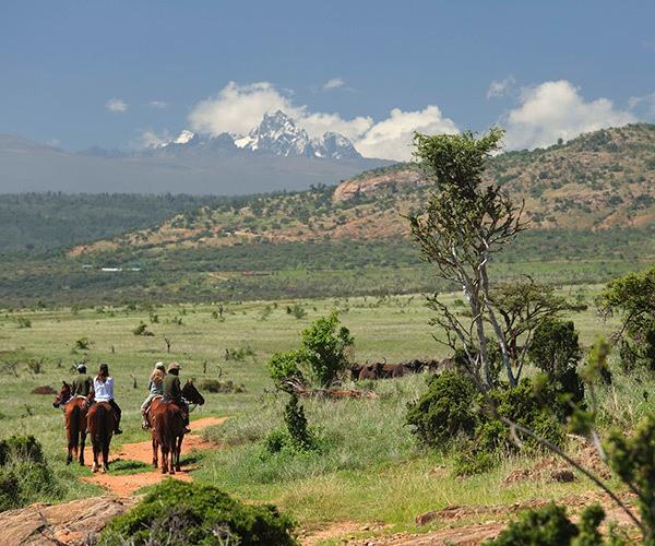 Riding horses in hills of Laikipia near buffalo herd