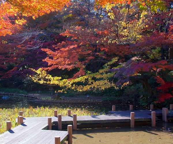 Gotenyama Garden in Shinagawa, Tokyo