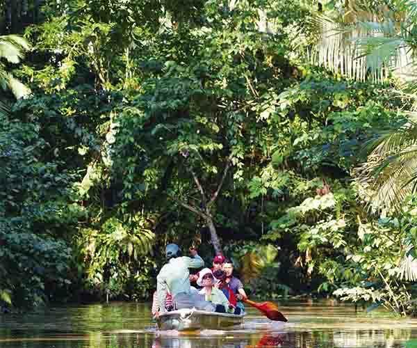 Añangu Creek- NWC