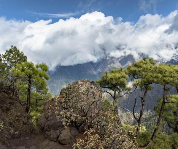 Cumbrecita in La Palma