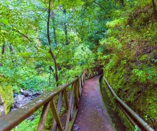 Hiking Network in La Palma