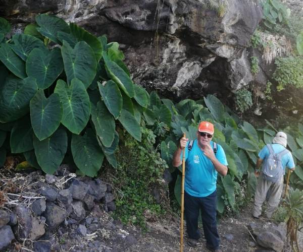 Hiking Trails on the island of La Palma