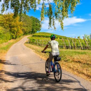 The latest COVID-19 coronavirus and travel news from Provence