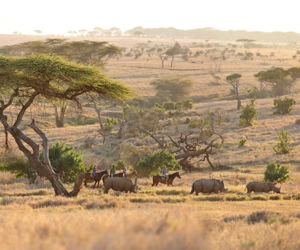 horse-riding-safari-rhino-close-encounter-lewa-wilderness-kenya
