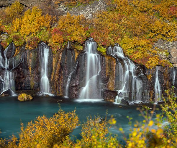 The glorious autumn colors paired with the myriad streams from Hraunfossar, lava waterfall, West Iceland