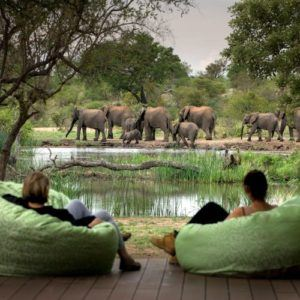 The unexpected luxuries of a safari