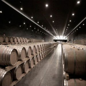 The best wineries to visit when in Spain