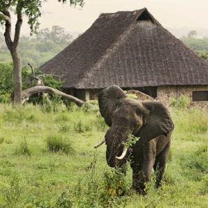 Tanzania's safari secrets