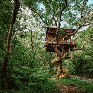 New luxury treehouse resort in Okinawa, Japan