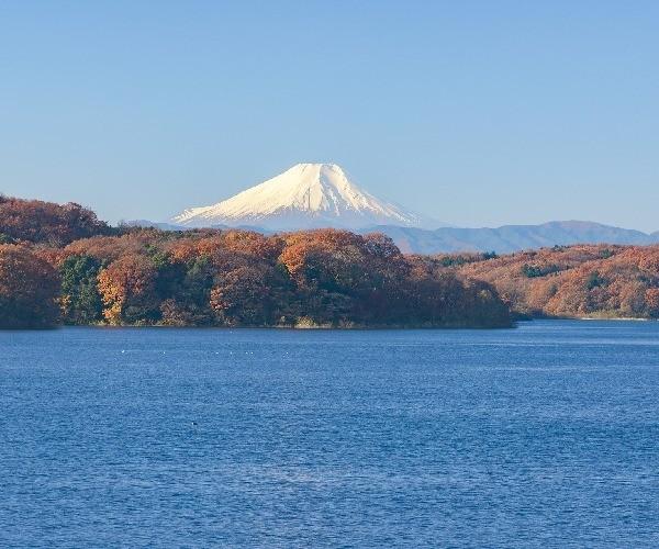 mt-fuji view