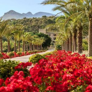 5 best luxury countryside hotels in Mallorca with great food