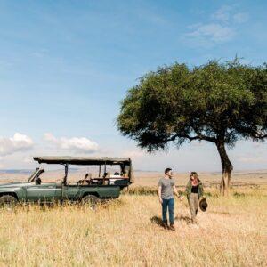 Kenya safari: A love affair with the wild