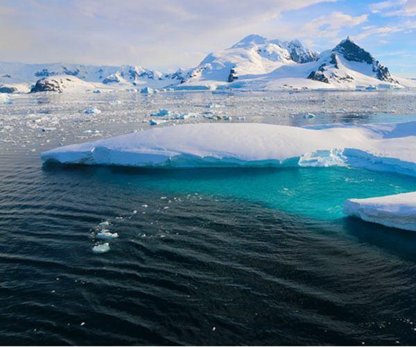 Views Untamed Antarctica