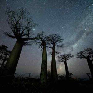 Stargazing Introduction