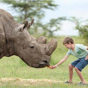 5 must visit destinations in Kenya