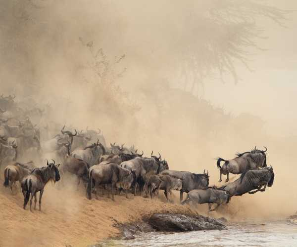 7 reasons why Tanzania should be on your bucket list