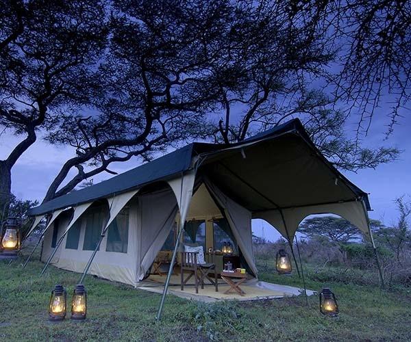 Hoopoe Safaris