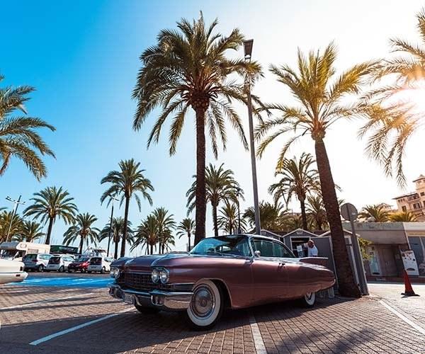 5 things to do in Palma de Mallorca