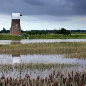 The Norfolk wetlands