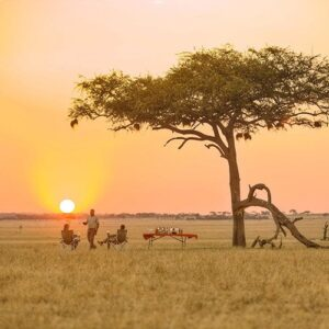 Exploring the National Parks of East Africa