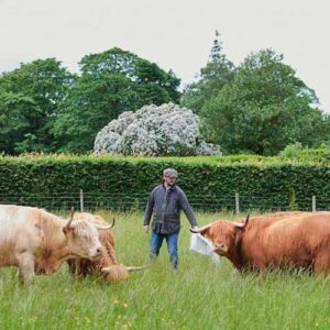 Top 5 sustainable hospitality businesses in Scotland